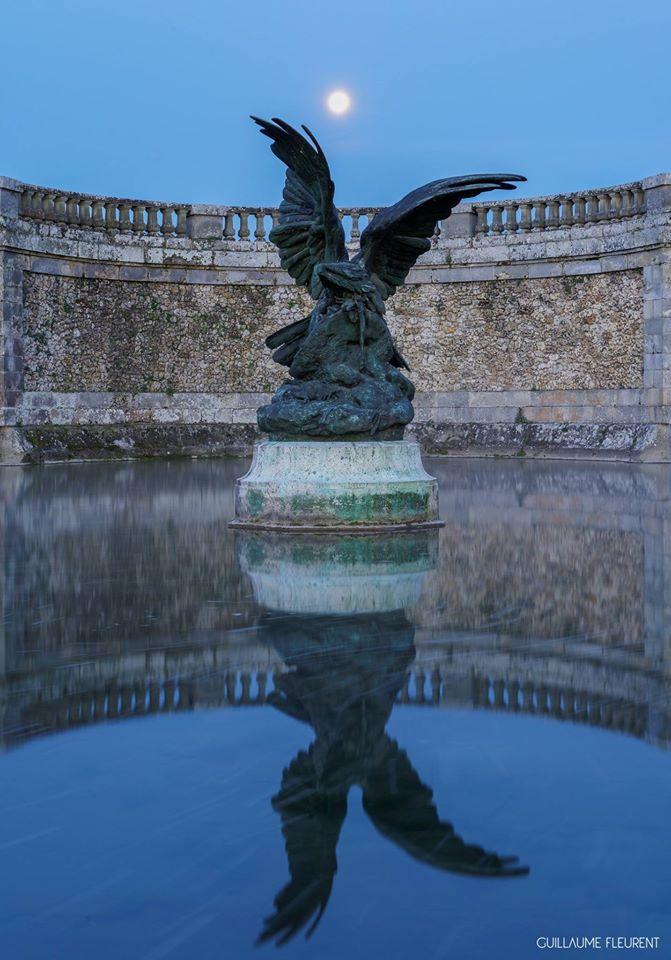 Aigle se préparant à défendre sa proie - château de Fontainebleau