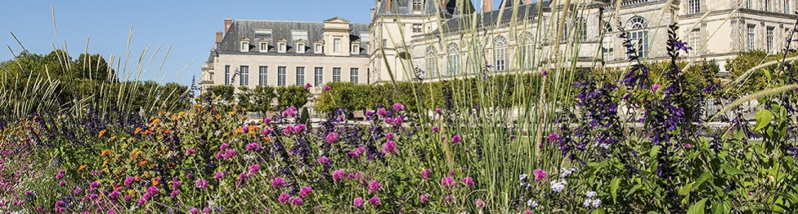 Cet été au château de Fontainebleau