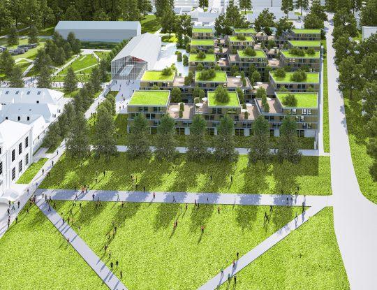 Projet-Héronnières-Synthèse-IAC-003